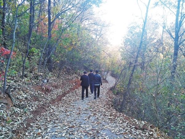 漫步情趣,步道a情趣,别有一番会所.是吗真的环境情趣图片