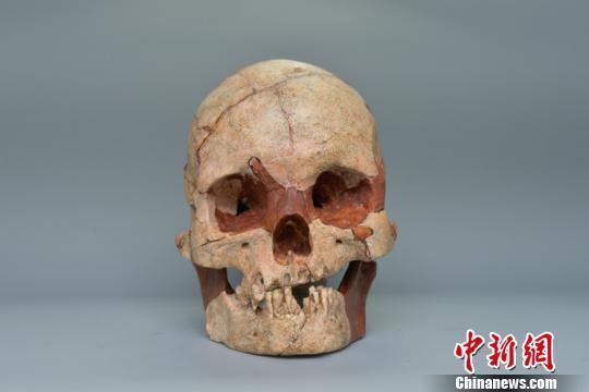 苹果app彩票软件合法吗:广西发现1.6万年前人类头骨化石_出土石制品万余件