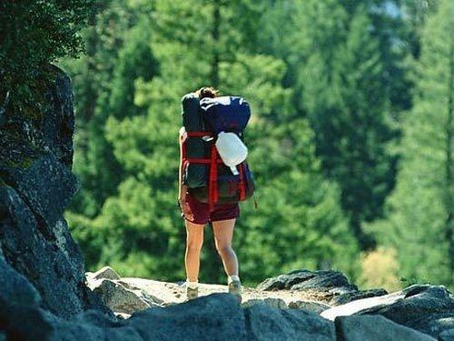 超级假日出行人数超7亿亟待旅行保险破题助力