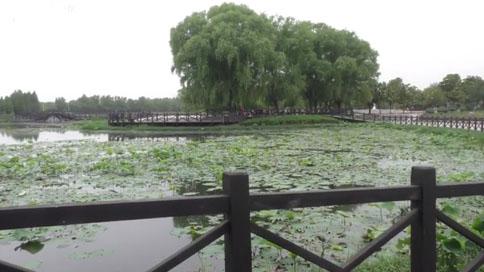 【水到渠成共发展】这项工程给河南带来哪些利好?