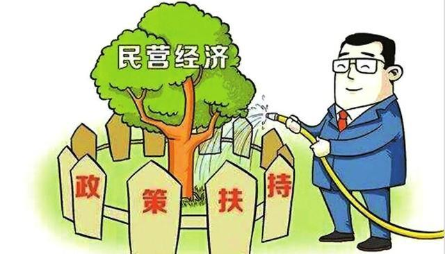 新时代民营经济提质发展的策略