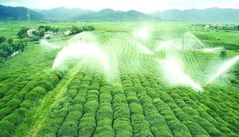 树牢绿色发展理念 实现农业高质量发展