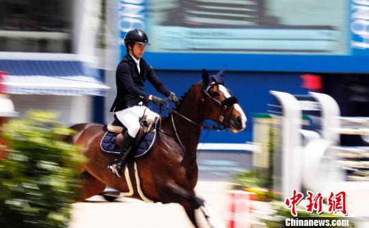 上海环球马术冠军赛最高组别诞生首位女冠军-大