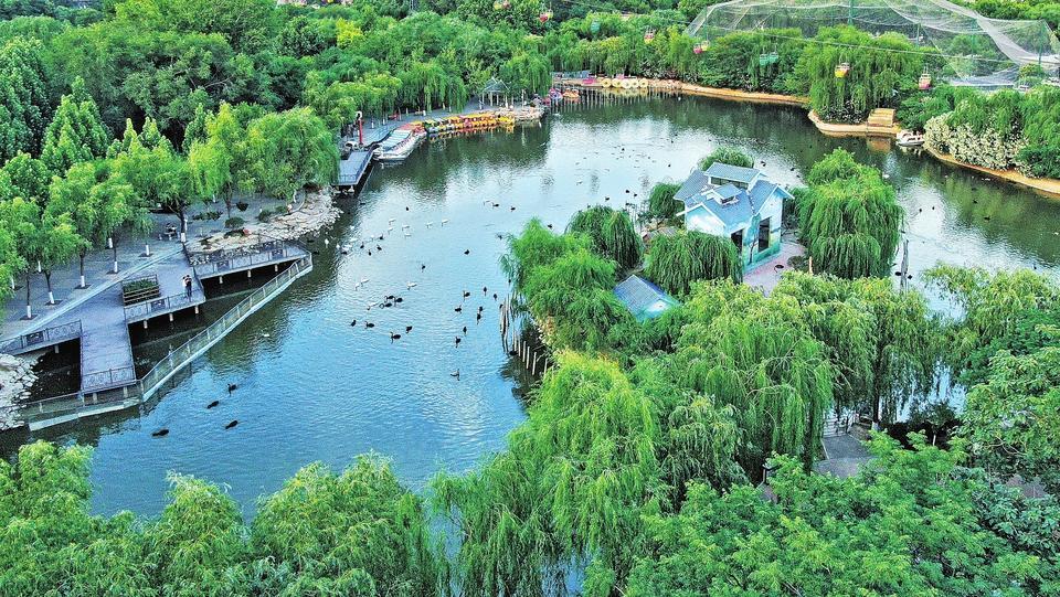 变化中的郑州市动物园:既有颜值又有文化