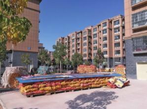 黄河岸边建起现代化城镇 滩区群众迁居乐业