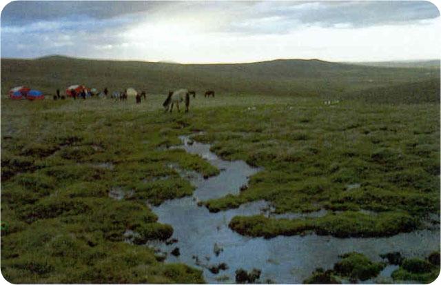 加强水资源可持续利用 确保黄河国家战略行稳致远
