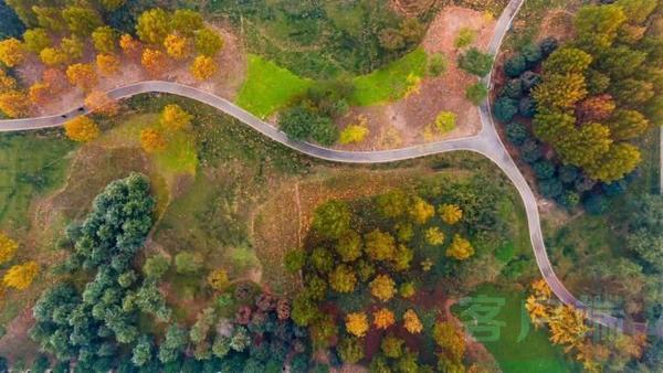 """郑州""""公园城市""""规划正式发布 让城市更美!更绿!"""
