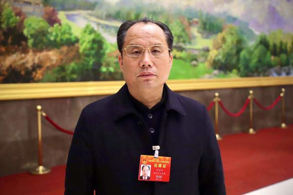 河南省人大代表刘海科:建议少林功夫申报世界人类非物质文化遗产