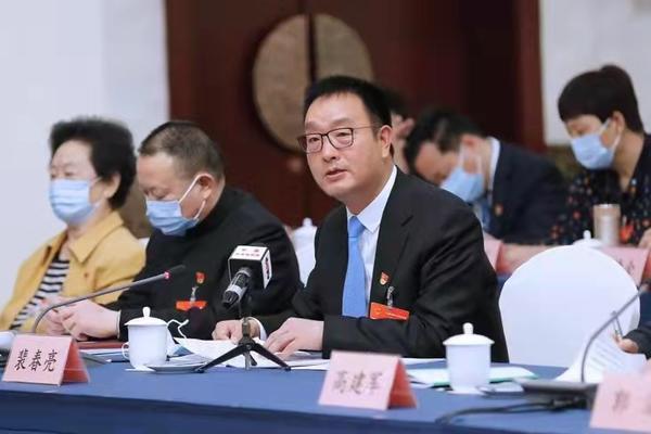 河南代表团审查计划报告和预算报告