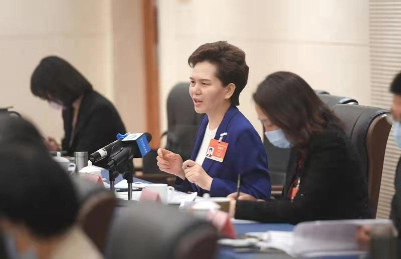 """河南代表团审议全国人大常委会工作报告""""两高""""报告等"""