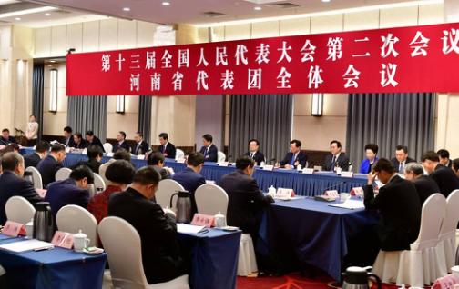河南代表团举行全体会议 审议外商投资法草...