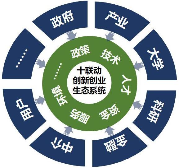 国内外创新生态系统构建经验及启示
